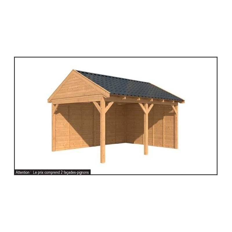 Carport bois 2 pentes maison design for Abri bois 20m2