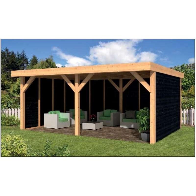 Remise / auvent / pool house / toit plat en mélèze douglas